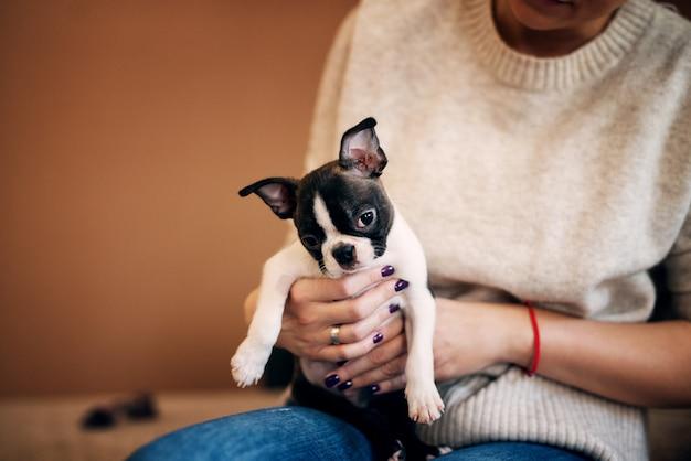 Молодая девушка держит красивую собаку обеими руками. бостон-терьер.
