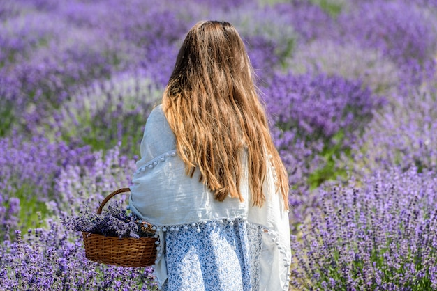 Young girl in a lavender field on the arm with a basket.
