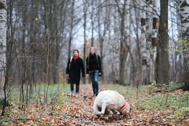 秋の庭を散歩している少女