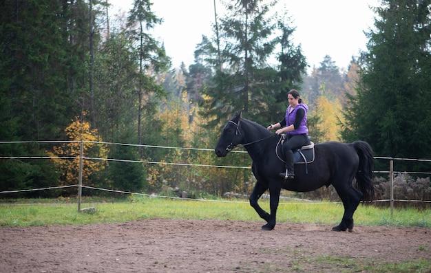 Молодая девушка верхом на лошади на закате верховая езда