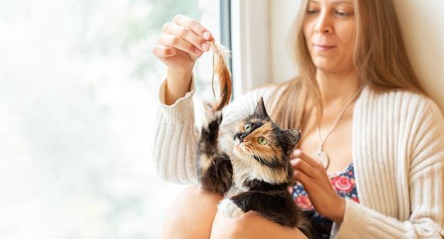 그녀의 3 색 오렌지 흑백 긴 머리 젊은 고양이와 깃털에 의해 재생 창 옆에 앉아 어린 소녀. 좋아하는 애완 동물. 고양이 총구에 선택적 초점.