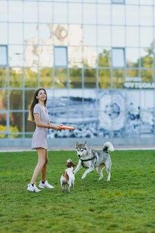 緑の草の上でハスキーと遊んでいる小さな面白い犬にオレンジ色のフライングディスクを投げる少女。リトルジャックラッセルテリアとエスキモー犬のペットが公園で屋外で遊んでいます。野外で犬と飼い主。