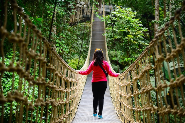 Young girl walking in bridge rainforest suspension bridge, crossing the river, ferriage in the woods.