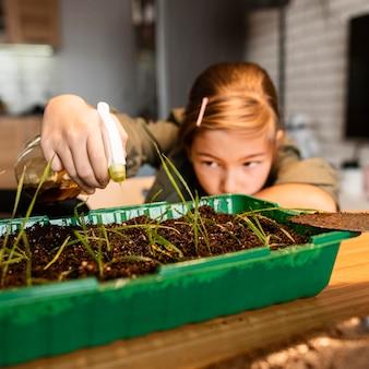 家で作物に水をまく少女