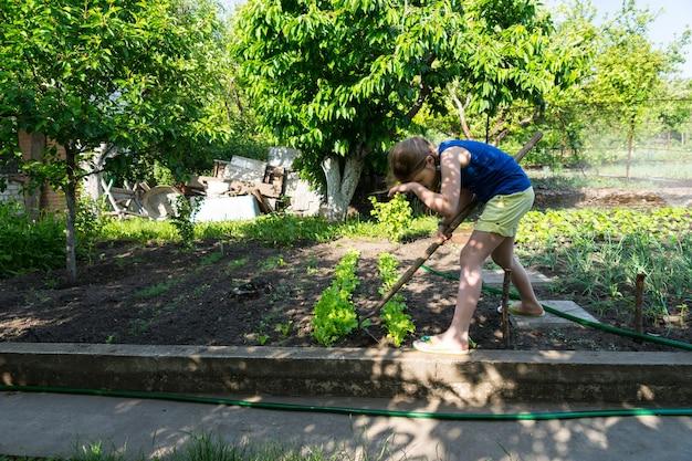 小さな手持ちのくわで新鮮な若い緑の植物の間の草むしり野菜の庭で働く若い女の子