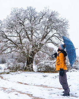 A young girl in a yellow jacket and an umbrella next to a giant snowy tree. snow in the town of opakua near vitoria in araba