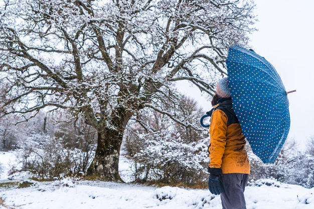 A young girl in a yellow jacket and an umbrella next to a giant snowy tree. snow in the town of opakua near vitoria