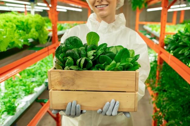 수직 농장 안에 녹색 시금치 묘목이 든 나무 상자를 들고 보호 작업복을 입은 젊은 여성 농공학자