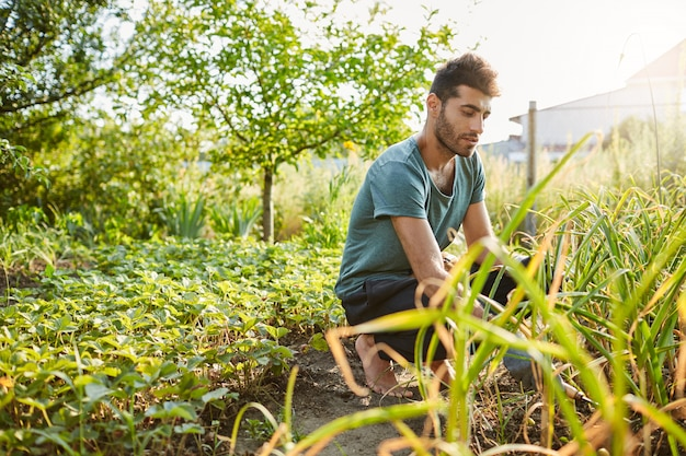 Young good looking mature caucasian male gardener in blue t-shirt and sport pants working in garden near countryside house