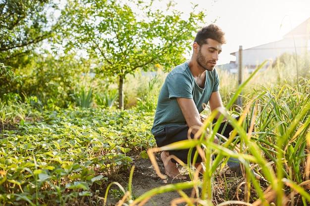 田舎の家の近くの庭で働いている青いtシャツとスポーツパンツで若い格好良い成熟した白人男性庭師