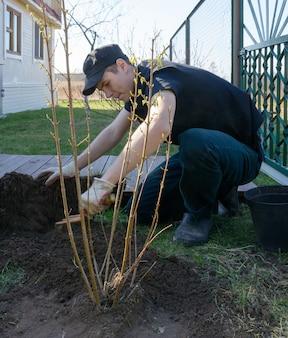 彼の家の近くに茂みを植える若い男