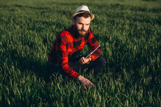 Young handsome bearded farmer with tablet analyzes the crop in wheat field in early summer