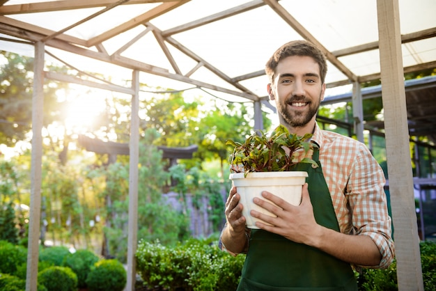 Young handsome cheerful gardener smiling, holding pot with plant
