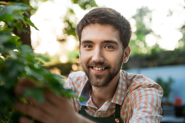 Young handsome cheerful gardener smiling, taking care of plants