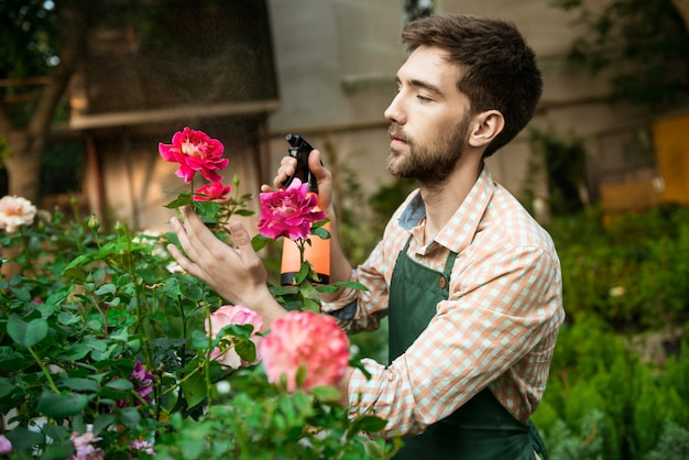 Young handsome cheerful gardener smiling, watering, taking care of flowers