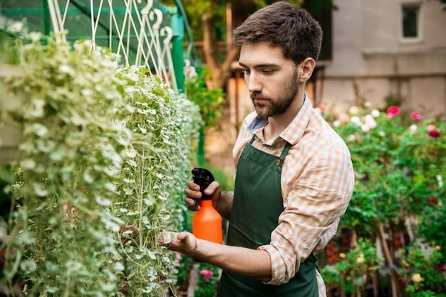 Giovane giardiniere allegro bello sorridente, irrigazione, prendersi cura delle piante