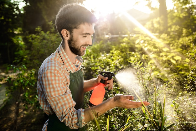 Young handsome gardener smiling, watering, taking care of plants