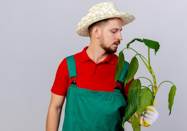 コピースペースで白い壁に隔離された植物を保持し、見ている庭師の手袋を身に着けている制服と帽子の若いハンサムなスラブ庭師