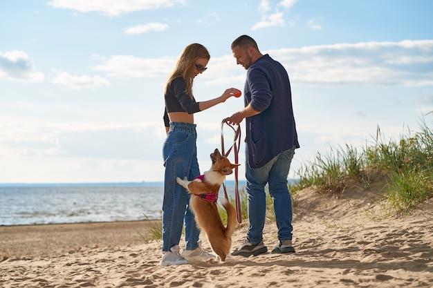 砂浜のビーチで犬と遊んで幸せなカップル。リーシュにコーギーの子犬を抱きかかえた