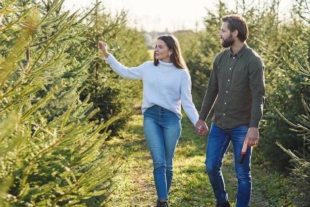 Молодая счастливая семья, выбирая елку на плантации, готовя зимние каникулы.