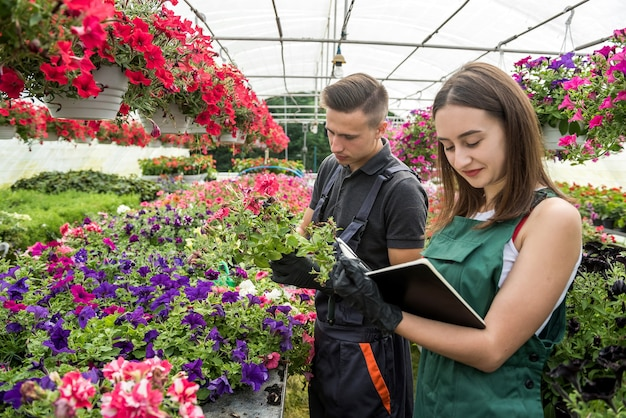 Young happy florists couple take care of flowers at a greenhouse. family business
