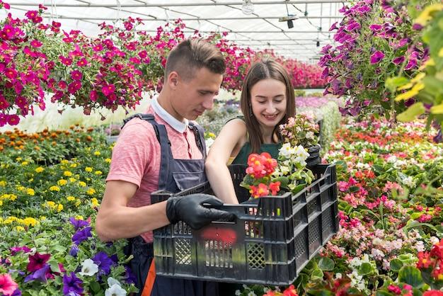若い幸せな花屋のカップルは温室で花の世話をします