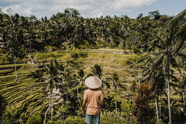 Young happy tourist enjoying the lovely view of the rice terrace in bali, indonesia. sunny, relaxed day in tegalalang. travel photograph. lifestyle.