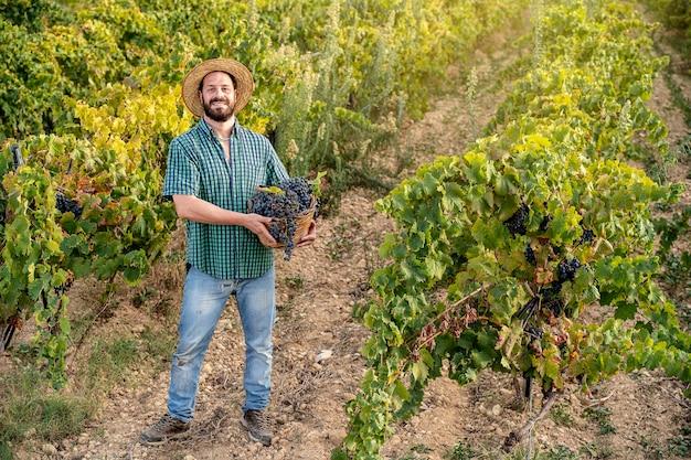 포도원에서 일하는 젊은 힙스터 수염난 웃는 소년 농부