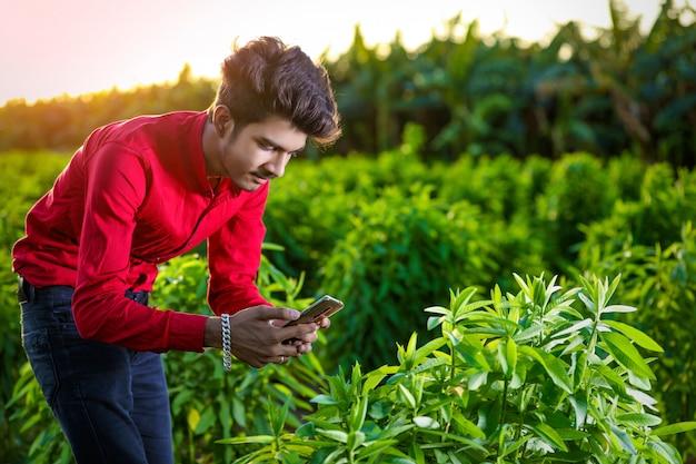 スマートフォンでフィールドを分析する若いインドの農学者