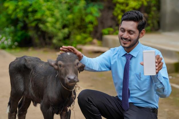 子牛とスマートフォンを見せている若いインドの畜産役員または銀行家。