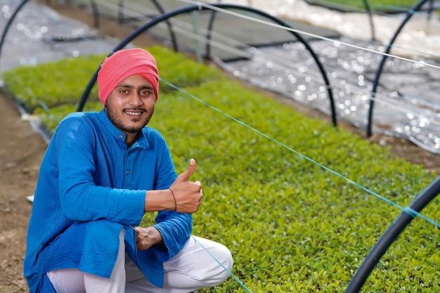 温室またはポリハウスの若いインドの農民