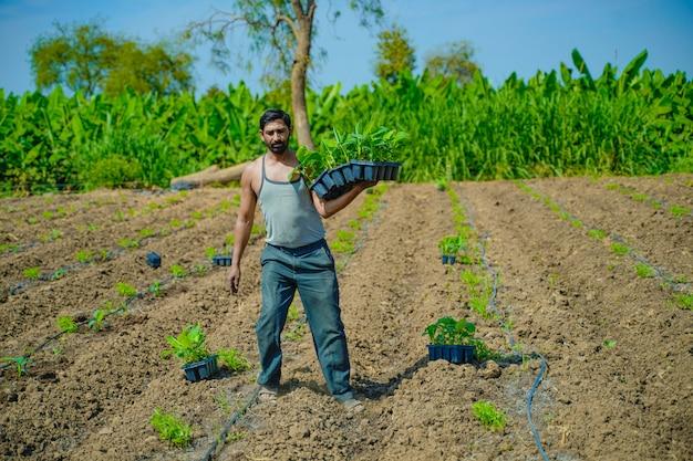 Young indian farmer at banana field