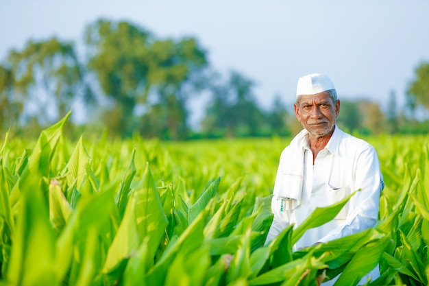 Young indian farmer at field