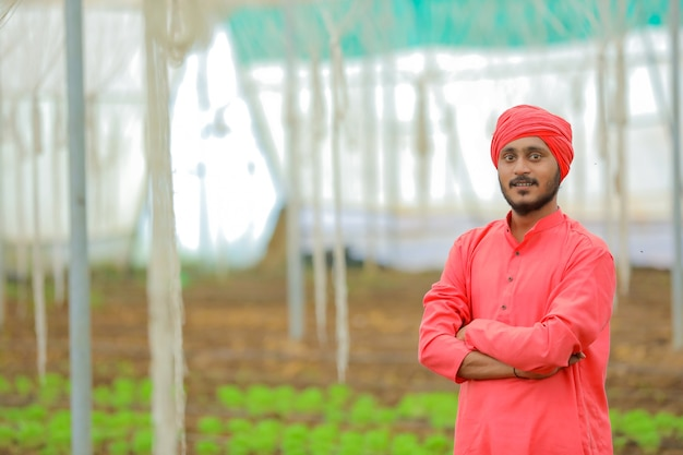 Young indian farmer at greenhouse or poly house