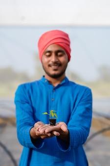 温室で小さな唐辛子作物を手に持っている若いインドの農民