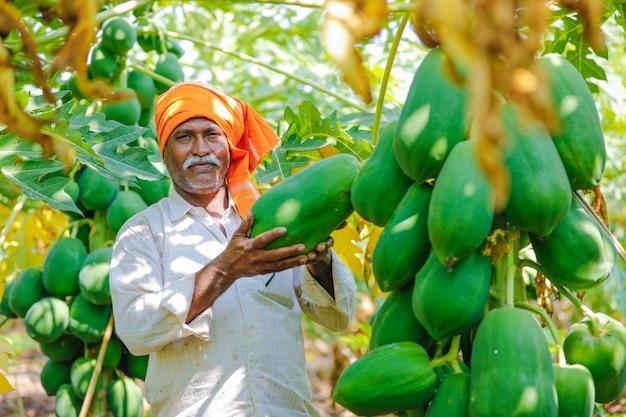 Young indian farmer at papaya field