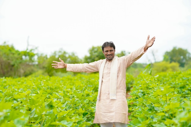 Young indian farmer standing in cotton agriculture field.