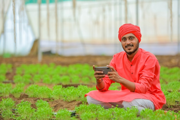 Young indian farmer using smartphone at poly house