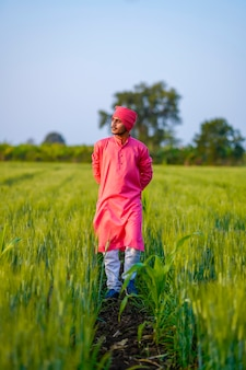 緑の麦畑を歩く若いインドの農夫