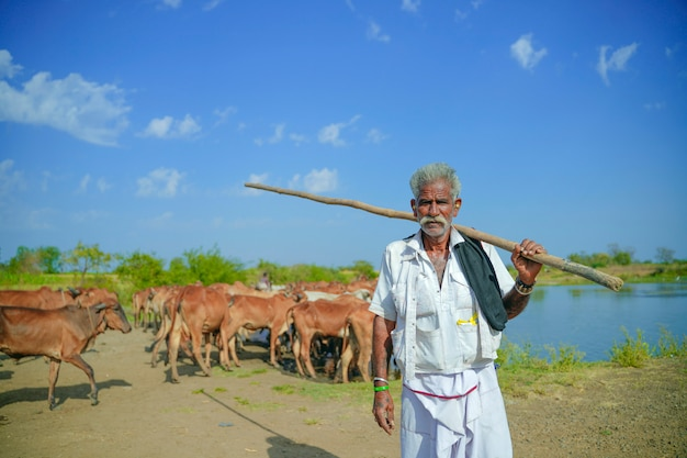 Young indian farmer with his cattle