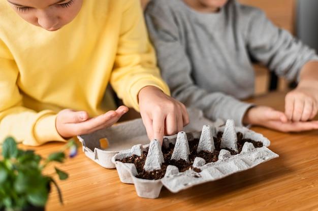 家で幼い子供たちが種を蒔く
