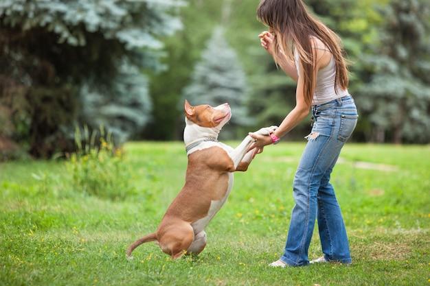 Молодая леди, играя с собакой на открытом воздухе