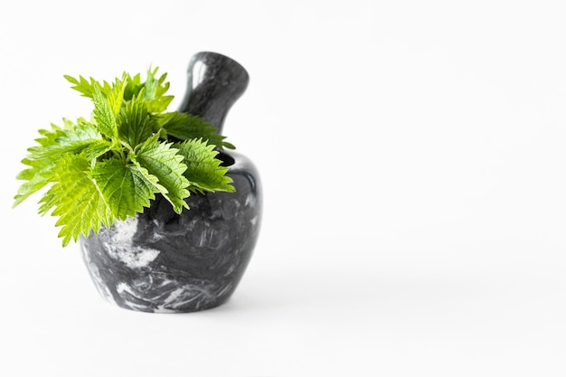 Young leaves of nettle in a marble mortar on a white background. copy space