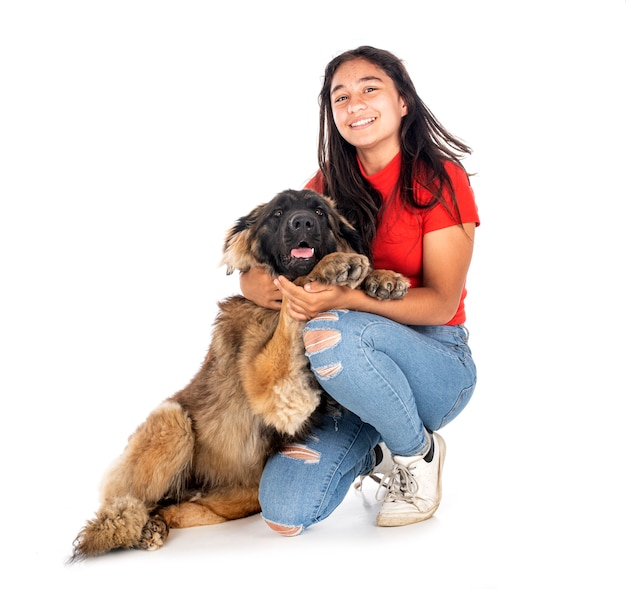 Young leonberger and woman in front of white background