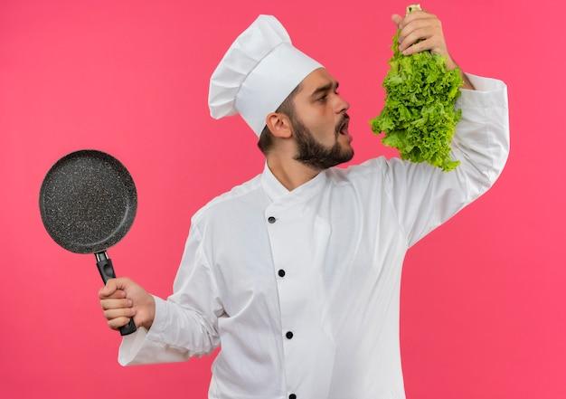 ピンクのスペースで隔離のレタスを噛もうとしているフライパンとレタスを保持しているシェフの制服を着た若い男性料理人