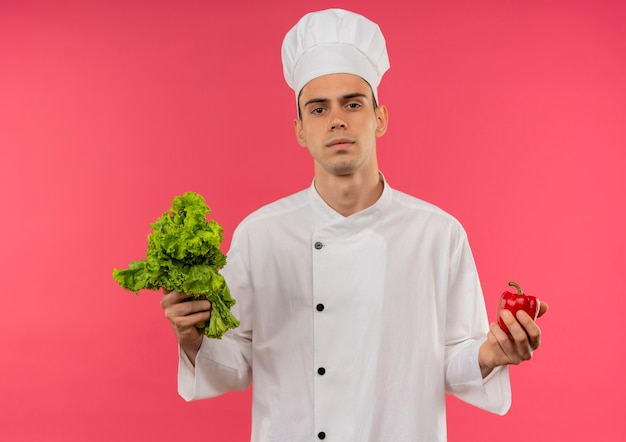Young male cook wearing chef uniform holding salad and pepper on isolated pink wall