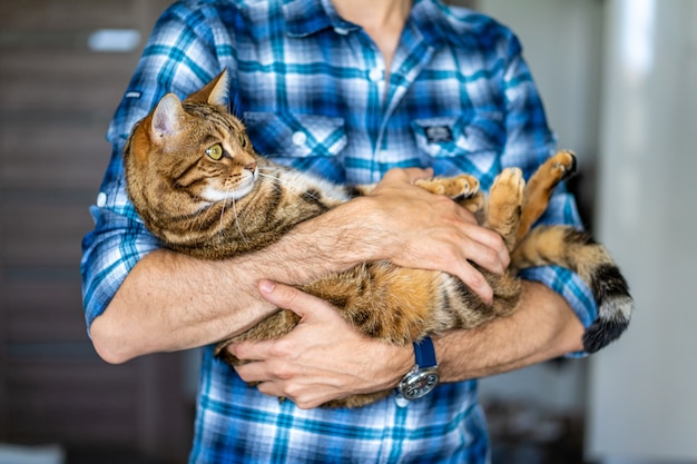 Young male holding a cute bengal tiger cat in his hands