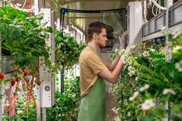 作業服を着た垂直農法の若い男性労働者が温室内の温度をチェックし、コントロールパネルのそばに立って温度を調整します