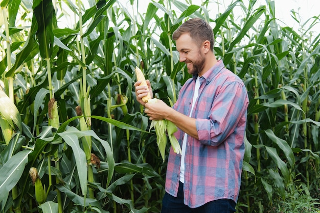 トウモロコシ畑に立ち、収穫量を管理している青年農学者。
