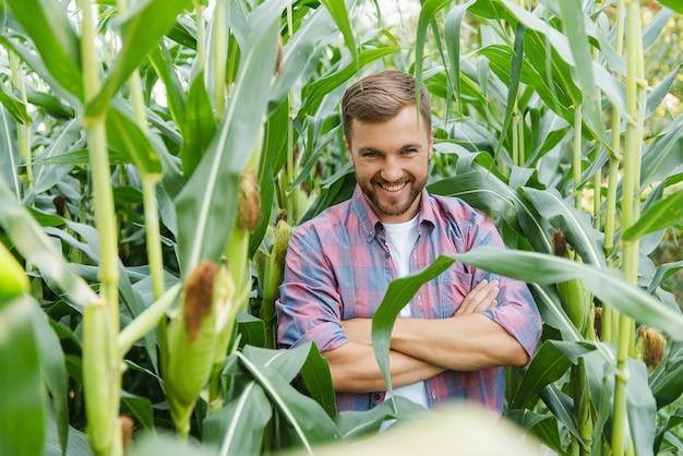 Молодой человек-агроном стоит на кукурузном поле и контролирует урожай.